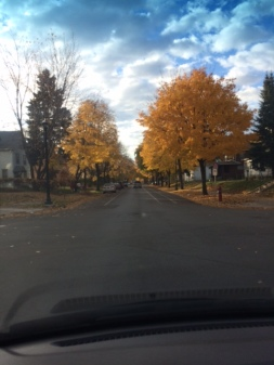 Our streets are beautiful this time of year. We LOVE Minneapolis!